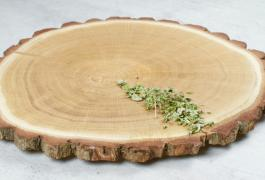 SNACK BOARD FOREST GLADE,